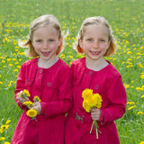 Flower girls Stock Image