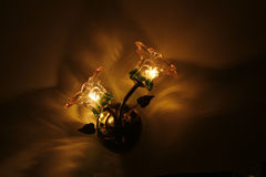 Flower glass wall lamp Stock Photo