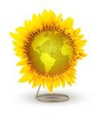 Flower globe Stock Photography