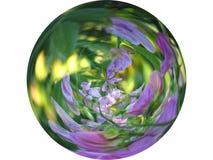 Flower globe 2. Flower globe on the white background, illustration based on photo of flowers stock illustration