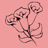 Flower graphic design. Vector floral hand drawn element for decoration and design. Royalty Free Stock Photos