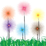 Flower on grass. Flower of frame on grass Royalty Free Stock Photos