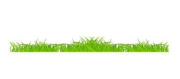 Flower and grass Borders set. vector illustration Stock Photo