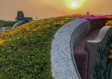 The flower on the grass of chinese mausoleum, in Tomb Sweeping F stock photography
