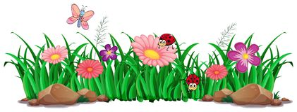 Flower and grass for decor. Illustration royalty free illustration