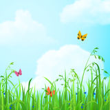 Flower grass lawn #vector flat background with clouds sky Royalty Free Stock Photography