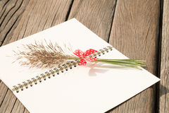 Flower grass with red bow and notebook on wood table Royalty Free Stock Images