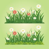 Flower and grass seamless vector element vector illustration