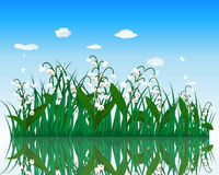 Flower with grass on water surface Stock Photos