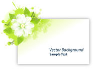 Flower Gree Card. Flower Green Card Butterfly Rain Stock Illustration