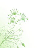 Flower in green Stock Photos