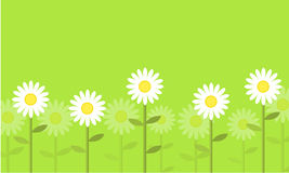 Flower on green background vector Royalty Free Stock Photos