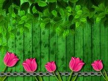 Flower, Green, Leaf, Flora Stock Photography