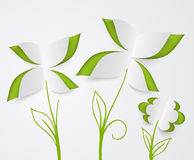 Flower and green leaves of paper Stock Photo
