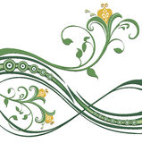 Flower and green vines pattern. Drawing of beautiful flower and green vines pattern in a white background Royalty Free Stock Photo