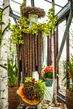 Flower greenhouse, floristic decor elements close-up. Keukenhof is the world's largest flower garden. KEUKENHOF GARDEN, NETHERLANDS - MARCH 24: Flower royalty free stock image