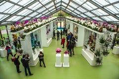 Flower greenhouse, floristic decor elements close-up. Keukenhof is the world's largest flower garden. KEUKENHOF GARDEN, NETHERLANDS - MARCH 24: Flower stock photo