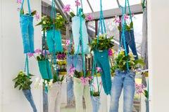 Flower greenhouse orchid pavillion, floristic decor elements. Lisse, Netherlands - April 4, 2016: Floristic decor elements in dutch park spring garden royalty free stock photography