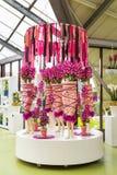 Flower greenhouse orchid pavillion, floristic decor elements. Lisse, Netherlands - April 4, 2016: Flower greenhouse orchid pavillion, floristic decor elements in stock photo