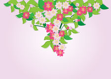 Flower greeting card. Greeting card with a flower.vector illustration vector illustration