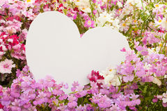 Flower greetings from heart. Garden flowers with white, heart shaped copyspace for your message of love Royalty Free Stock Photography
