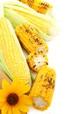 Flower,grilled corn and fresh cobs. Royalty Free Stock Images