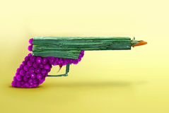 Flower gun Royalty Free Stock Images