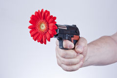 Flower gun Royalty Free Stock Image