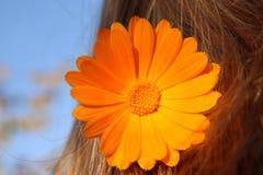 Flower in hair Stock Photo
