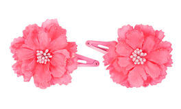 A flower hair clip Stock Photography
