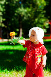 Flower in hand. Portrait of a girl with a flower in your hand Stock Photography