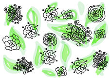 Flower hand drawing illustrator. Flower flora floral green different leave leaves leaf tree plant nature paint painting design decor decorate decorted decoration Stock Image