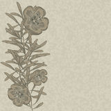 Flower hand drawn flax background Royalty Free Stock Photos