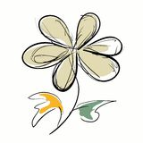 Flower hand drawn on the white background Royalty Free Stock Photos