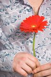 Flower hand man. Model holding a red flower Royalty Free Stock Images