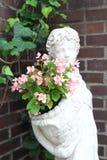 Flower hanging pot Stock Photos