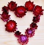 Flower hart Royalty Free Stock Photo