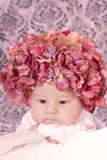 Flower hat baby stock photography