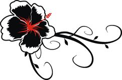 Flower hawaii. Hawaian flower in format easy to edit vector illustration