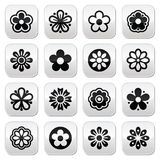 Flower head  buttons set Royalty Free Stock Image