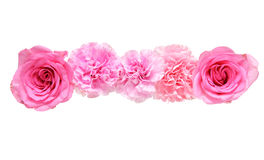 Flower head of carnation and rose Stock Photo