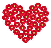 Flower heart Royalty Free Stock Image
