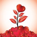 Flower with heart Stock Image