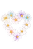Flower Heart. Multicolored flower heart on white background Royalty Free Stock Image