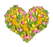 Flower heart Royalty Free Stock Photos