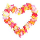 Flower heart. Stock Photography