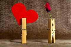Flower and Heart Royalty Free Stock Images