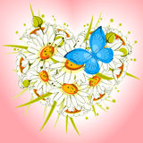 Flower heart of daisies Royalty Free Stock Images