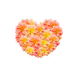 Flower heart image Royalty Free Stock Image