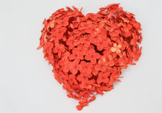 Flower Heart. Heart made with red flowers Royalty Free Stock Images